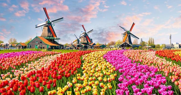 Pays-Bas (Hollande)